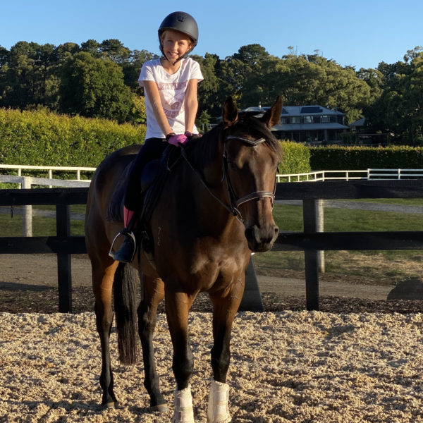 Boy patting horse at gate