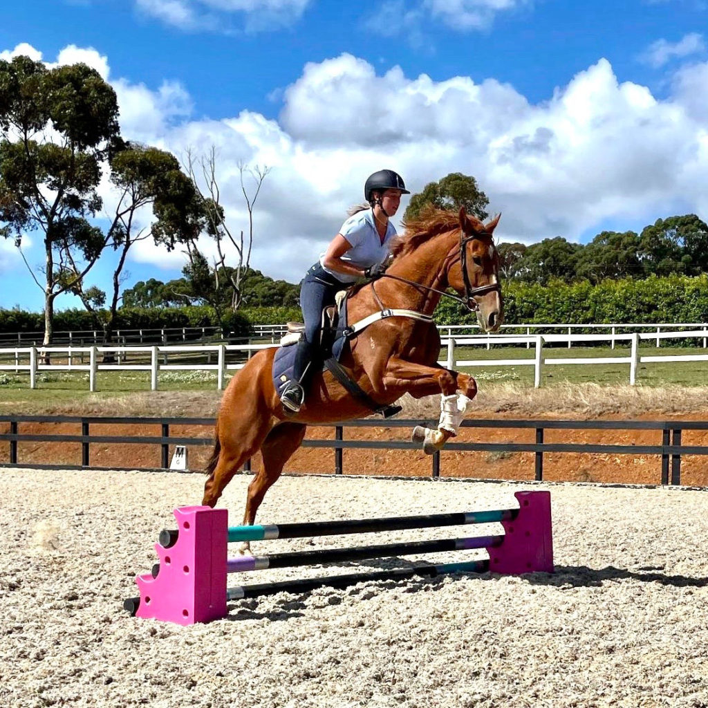horse jumping over obstacle