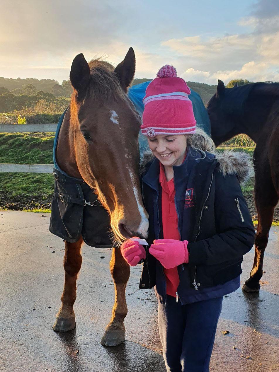 Girl kissing horse