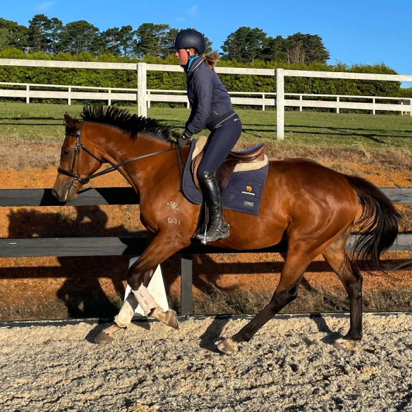 instructor riding horse